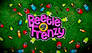 Beetle Frenzy